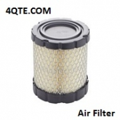 Briggs & Stratton 798897 Air Filter